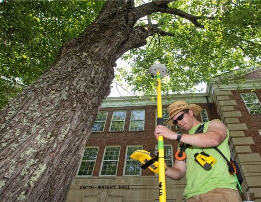 Arborist Consultations-South Miami Heights FL Tree Trimming and Stump Grinding Services-We Offer Tree Trimming Services, Tree Removal, Tree Pruning, Tree Cutting, Residential and Commercial Tree Trimming Services, Storm Damage, Emergency Tree Removal, Land Clearing, Tree Companies, Tree Care Service, Stump Grinding, and we're the Best Tree Trimming Company Near You Guaranteed!