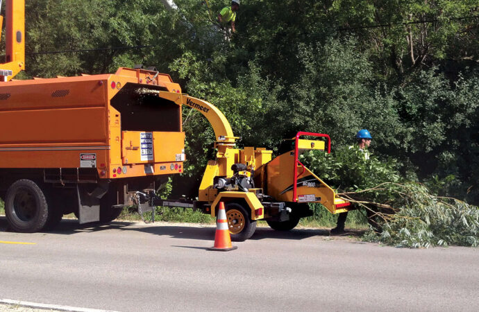 Commercial Tree Services-South Miami Heights FL Tree Trimming and Stump Grinding Services-We Offer Tree Trimming Services, Tree Removal, Tree Pruning, Tree Cutting, Residential and Commercial Tree Trimming Services, Storm Damage, Emergency Tree Removal, Land Clearing, Tree Companies, Tree Care Service, Stump Grinding, and we're the Best Tree Trimming Company Near You Guaranteed!