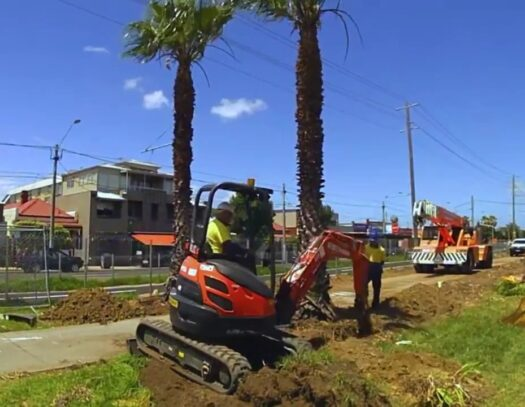 Palm Tree Removal-South Miami Heights FL Tree Trimming and Stump Grinding Services-We Offer Tree Trimming Services, Tree Removal, Tree Pruning, Tree Cutting, Residential and Commercial Tree Trimming Services, Storm Damage, Emergency Tree Removal, Land Clearing, Tree Companies, Tree Care Service, Stump Grinding, and we're the Best Tree Trimming Company Near You Guaranteed!