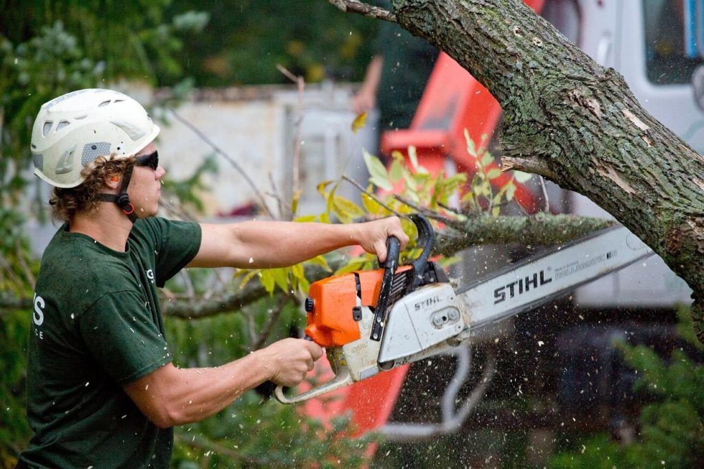 South Miami Heights FL Tree Trimming and Stump Grinding Services Home Page-We Offer Tree Trimming Services, Tree Removal, Tree Pruning, Tree Cutting, Residential and Commercial Tree Trimming Services, Storm Damage, Emergency Tree Removal, Land Clearing, Tree Companies, Tree Care Service, Stump Grinding, and we're the Best Tree Trimming Company Near You Guaranteed!