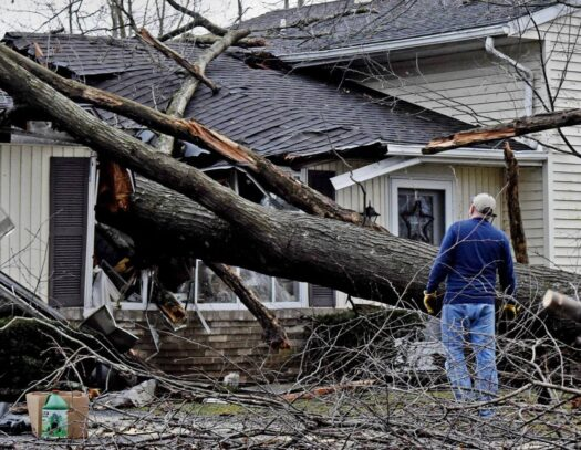 Storm Damage-South Miami Heights FL Tree Trimming and Stump Grinding Services-We Offer Tree Trimming Services, Tree Removal, Tree Pruning, Tree Cutting, Residential and Commercial Tree Trimming Services, Storm Damage, Emergency Tree Removal, Land Clearing, Tree Companies, Tree Care Service, Stump Grinding, and we're the Best Tree Trimming Company Near You Guaranteed!